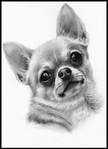 Blanco Y Negro Arte Chihuahua Perro Animal﹣Pintura Números Para Adultos﹣Lienzo Digital De Pintura Al Óleo﹣Lienzo Decoración Para El Hogar﹣40X50Cm﹣(Sin Marco)