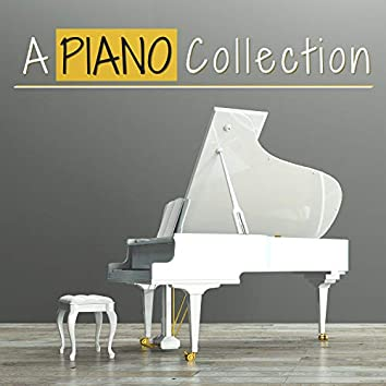 A Piano Collection - Acoustic Heavenly Piano Tracks, Healing Positive Music