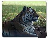 Mousepad del Arte del Animal Salvaje, cojín de ratón del Tigre de Amur con los Bordes cosidos