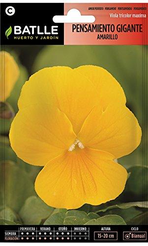 Semillas Batlle - Pensamiento Gigante Amarillo