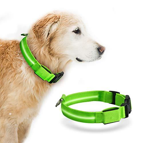 LED Hundehalsband Baytion USB wiederaufladbar Leuchten Hundehalsband mit wiederaufladbaren und Wasserdichten Blinklicht Glühenden kleinen mittelgroßen Hunden