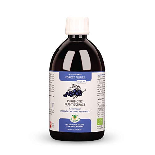 ECO Probiotic Plant Extract Jedrzej's Herbs Forest Fruits