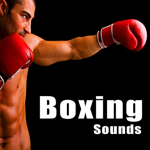 Boxer Training with Partner in Ring with...