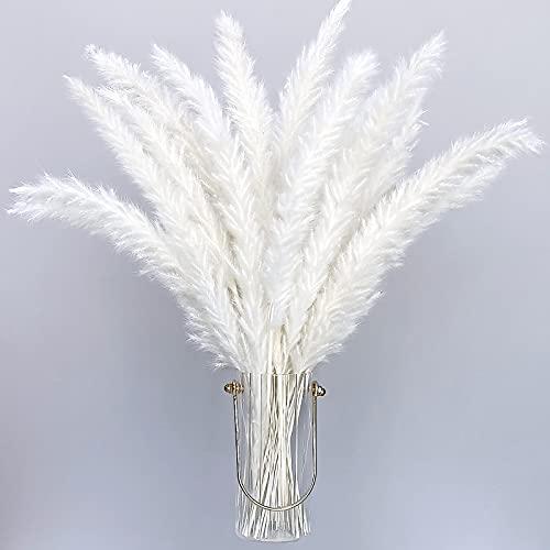 Flores Secas Naturales Blancas flores secas naturales  Marca Hileyu