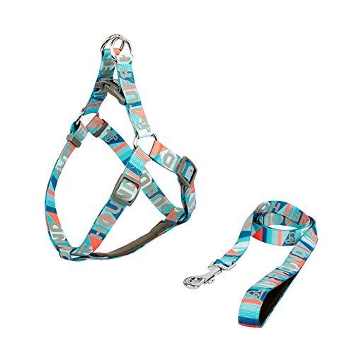 TWQ Collar y correa para mascotas, ajustable, suave y cómodo, para perros pequeños, medianos y grandes, correa de entrenamiento de mascotas de nailon con reflexión nocturna azul-XS