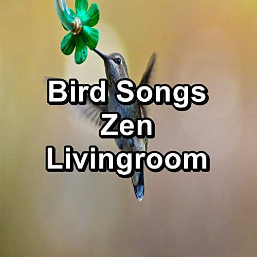 Nature Sounds, Calm Singing Brids Zone & Bird Songs