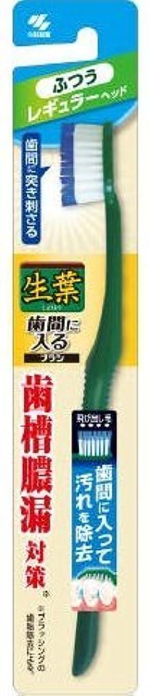 光沢ファイバ電気技師生葉歯間に入るブラシ レギュラー ふつう × 10個セット