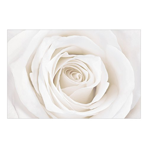 baratos y buenos Fotografía de pared del mundo de la fotografía – Pretty White Rose – Fotografía de paisaje… calidad