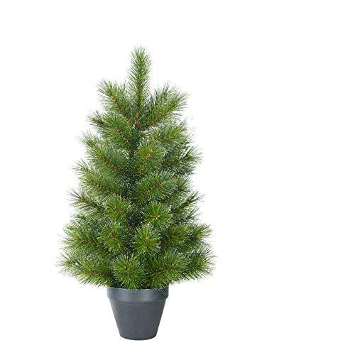 BLACK BOX Mini Weihnachtsbaum Glendon im Topf 60 x Ø 33 cm - Mini Tanne - Kleiner Christbaum