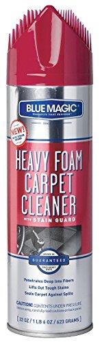 Foam Carpet Cleaner w/Stain Guard, 22 oz
