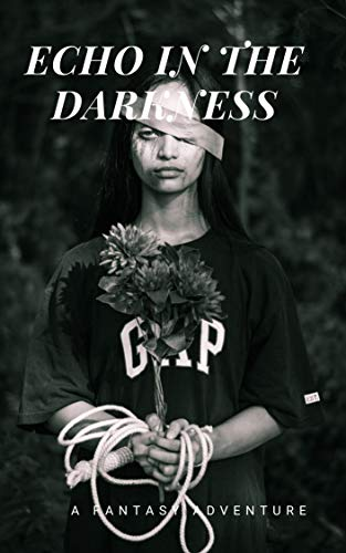 Echo In The Darkness (English Edition)