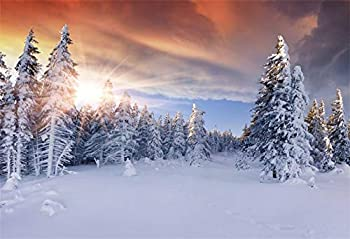 AOFOTO 10x7ft Sunset Winter Landscape Photography Backdrop Snow Covered Pine Trees Road Snowy Forest Background Family Gathering Events Festival Celebration Vinyl Photo Studio Drapes