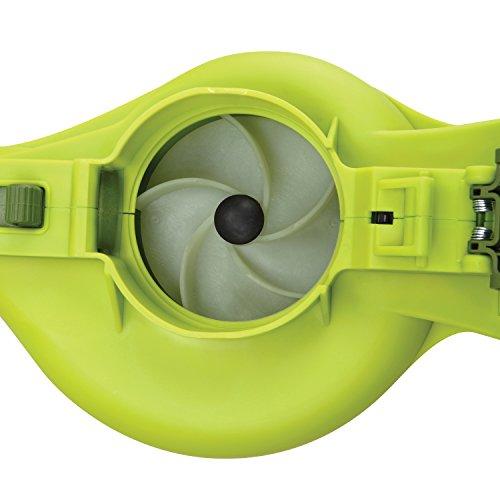 Sun Joe IONBV Joe 40v Cordless Blower/Vacuum/Mulcher, Kit (w/4.0-Ah Battery + Quick Charger)