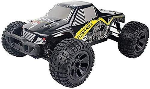 Alta velocidad eléctrico grande Race Car Rally Buggy Rápido remoto juguete de la escala del coche del control 1:12 for Niños Adultos de la rueda grande de amortiguación de control remoto de coches Cha
