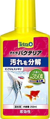 テトラ (Tetra) バクテリア 250ml