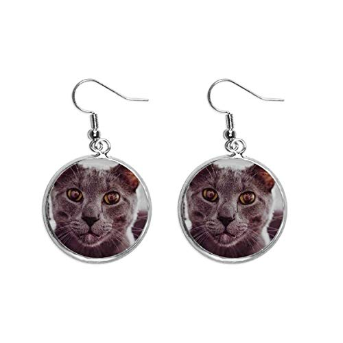 Pendientes de gota de plata con diseño de gato y ojo grande de animal, para mujer