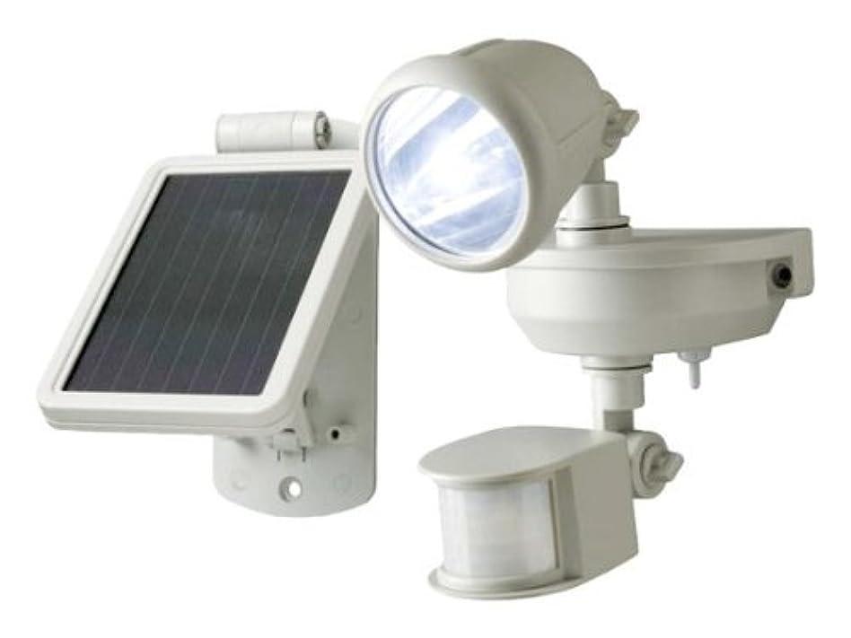 太平洋諸島嵐クリスマスソーラーLEDセンサーライト1W(MSL-SOL1W)  【CT-A156】