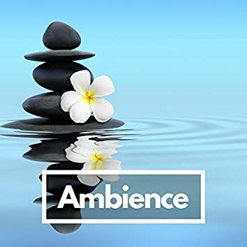 Ambience (Just relax)