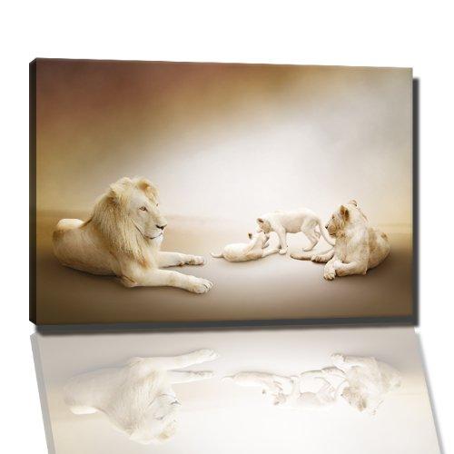 Löwenfamilie Bild auf Leinwand -- 120 x 80 cm fertig gerahmte Kunstdruckbilder als Wandbild - Billiger als Ölbild oder Gemälde - KEIN Poster oder Plakat