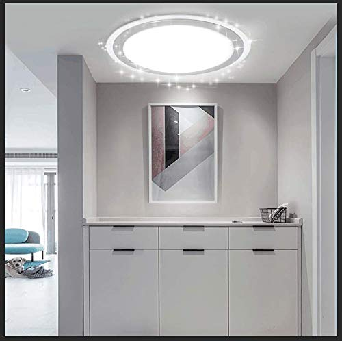 DLLT 22W LED Flush Mount Ceiling Light Fixture, Round Bright Disk Light Panel Wall Ceiling Down Lights,6000K Cool White, Perfect for Kitchen, Dining Room, Balcony , Study, Bedroom