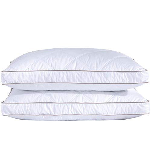 puredown® Almohadas de Plumas de Ganso Paquete de 2 Soporte Medio Cómodo Lavable a Máquina 4 Estaciones Disponibles, 46x66x5cm