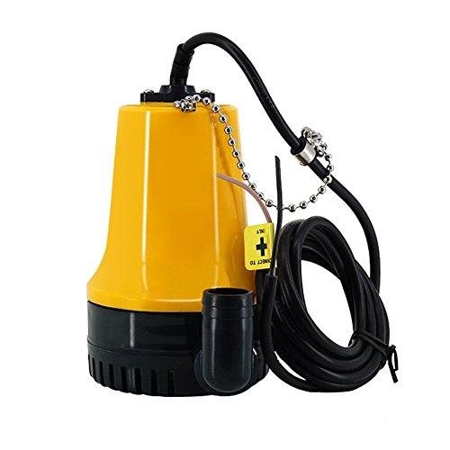 Zoternen 12V DC Wasserpumpe, Kleine DC 4600 U/min Bewässerungspumpe für Bewässerung und Brunnen, 50W Wasserpumpe