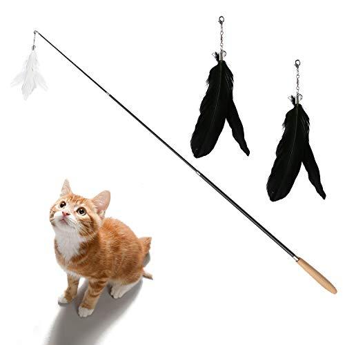 DADYPET Katzenspielzeug, Federangel Katze, Federspielzeug für Katzen, Angel mit Federn, interaktives Katzenspielzeug, mit DREI auswechselbaren Federn