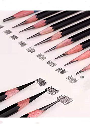 Ensemble de crayons à croquis, 12 pièces crayons graphite professionnels, Art Pencil Parfait pour les débutants, les enfants ou les artistes professionnels, (HB)