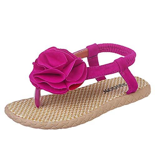 Zapatos bebé niña Verano ZARLLE Sandalias Florales de niñas Sneaker Calzado Zapatos de Vestir Casual Cordón Zapatos de Princesa Zapatilla de Cuna Chica