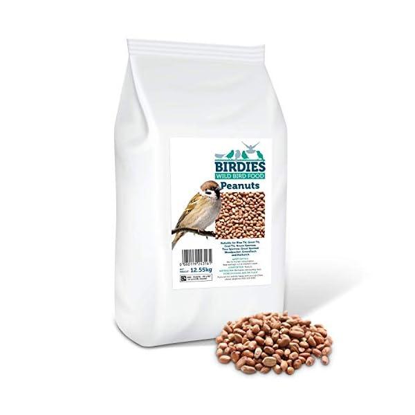 Birdies Wild Bird Food- Premium Peanuts - Bird Food for Wild Birds