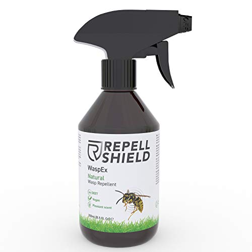 REPELL SHIELD Spray Ahuyentador de Avispas Natural - Repelente Anti Avispas Exterior e Interior - Spray Avispas Repelente sin Veneno para Avispas - Alternativa Vegana a Insecticida Avispero, 250ml