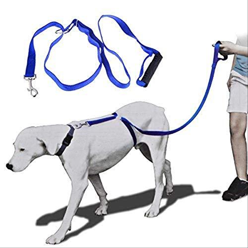 Arnes de Perro Arnés para Perros de Nylon para Mascotas Correas para Perros Grandes Entrenador instantáneo Cuerda para Caminar Entrenamiento Correa para arnés de Perro Azul