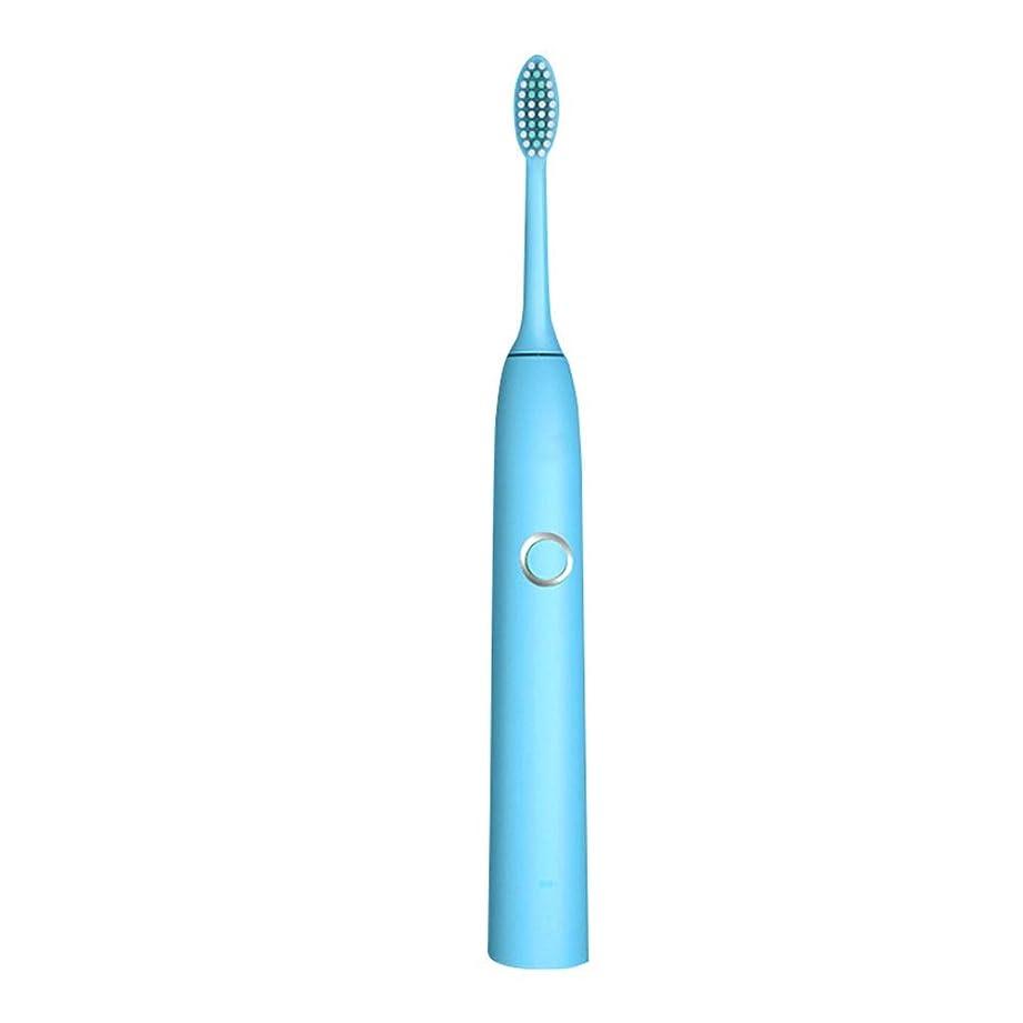 悲劇手段ハンバーガー自動歯ブラシ 電動歯ブラシ大人を白くする保護きれいなUSBの再充電可能 (色 : 青, サイズ : Free size)
