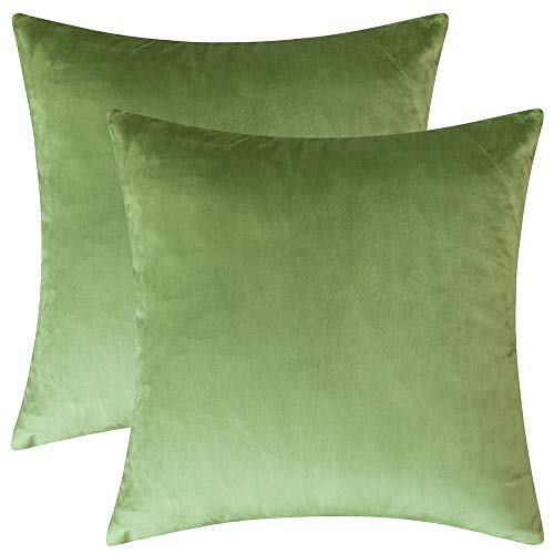Rythome Set of 2 Comfortable Velvet Throw Pillow Cases Decorative Solid Cushion Covers for Sofa Couch and Bed - 20'x20', Moss Green