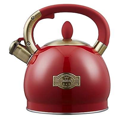 Tea Kettle -2.8 Quart Tea Kettles Stovetop Whistling Teapot Stainless Steel Tea Pots for Stove Top Whistle Tea Pot