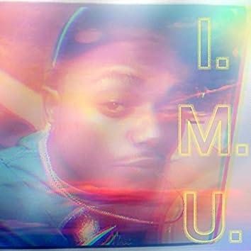 I.M.U