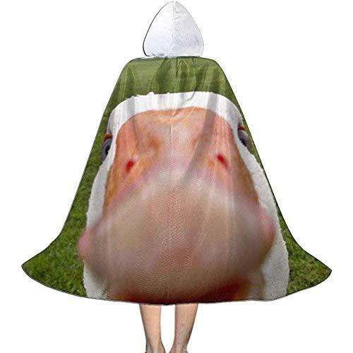 KDU Fashion Wizard Mantel, Grappig Dier Groene Weide Kids Hooded Aantrekkelijke Wizard Capes Voor Heks Kostuums Cosplay 138cm