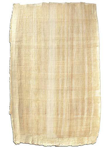 Forum Traiani Papyrus Blatt 92x62cm Naturrand, Cyperus Papyrus, echtes Papyri, handgelegtes Papyrus Papier, Papyrus-Rolle aus Ägypten, Unterrichtsmaterial Geschichte Naturprodukt