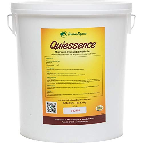 Quiessence (Large-14 lbs)