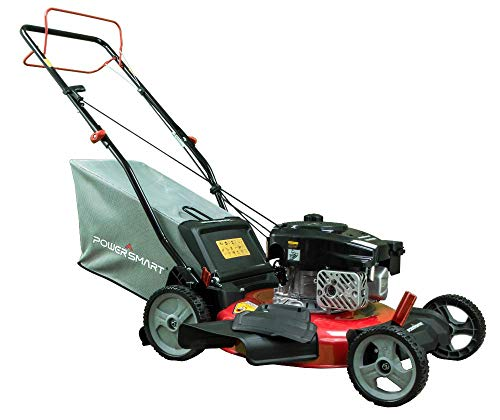 PowerSmart DB2321SR 21 Inch 170cc Engine Gas...