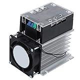 SSR-100WA-R 4KW Motor Módulo de control de arranque suave Control de conmutación Placa de arranque Accesorios del motor para ventilador de bomba de agua(Module + Radiator)
