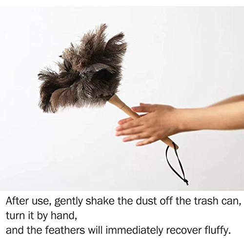 """Ostrich Feather Duster,Feather Duster Fluffy Natural Genuine Ostrich Feathers with Wooden Handle and Eco-Friendly Reusable Handheld Ostrich Feather Duster Cleaning Supplies, Gray and Brown(Length 16"""")"""