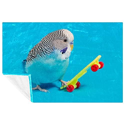 EZIOLY Blue Budgie Parrot Scooter - Manta para patas, súper mullida, suave y cálida de microfibra para cama, sofá, sofá, al aire libre, viajes, picnic, camping (59 x 39 pulgadas)