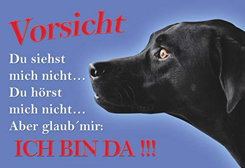 SCHILDER HIMMEL anpassbares Vorsicht Labrador Schild DIN A5 21x15cm Alu-Verbund mit Schrauben, Nr 22 eigener Text/Bild verschiedene Größen/Materialien