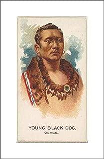 Best american indian cigarette brands Reviews