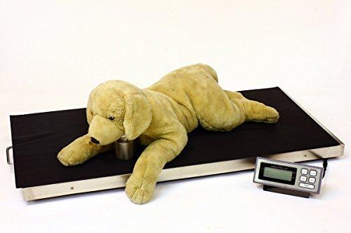 Tree® LVS-350 - Veterinary Scales - 350kg x 0,1kg - Balanzas Veterinarias
