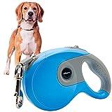 Edipets, Correa Perro Extensible / Retráctil, 3, 5 y 8 Metros, Cinta Flexible para Adiestramiento y Paseo, para Perros Pequeños, Medianos y Grandes (Azul, 3 Metros)