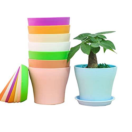 8 Pezzi Vaso di Fiori balcone Colorati vasi in Plastica per Fiori, per Arredo Casa, Giardinaggio, Vasi da Fiori per Interni con Pallet (10cm)