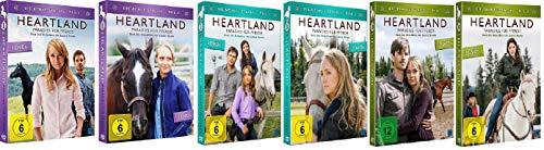 Heartland - Paradies für Pferde: Staffel 8-10 (8.1+8.2+9.1+9.2+10.1+10.2, 8 bis 10) [DVD Set]