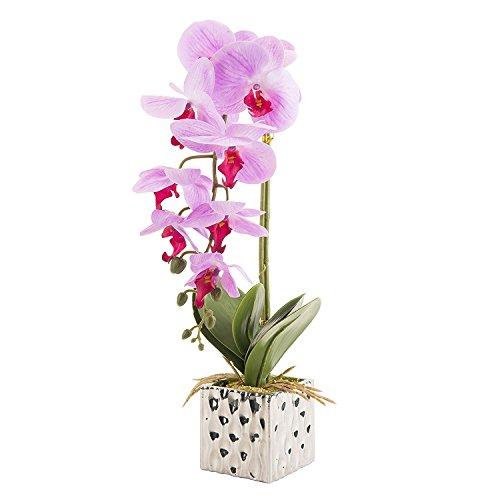 CLOCOLOR Flores artificiales de orquídeas Bonsái de Phalaenopsis con